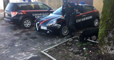 Pontecorvo/Ceprano/San Giovanni – Sicurezza alla guida e spaccio di droga: scatta l'operazione Periferie Sicure