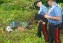 Aquino – Maxi sequestro ambientale: sigilli a 3 ettari di terreno
